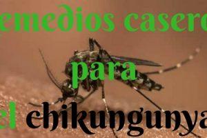 Remedios caseros para el chikungunya