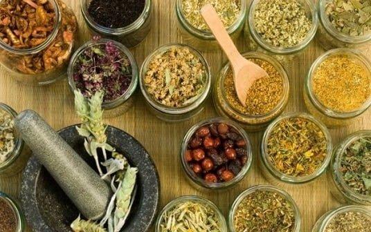 beneficios-plantas-salud