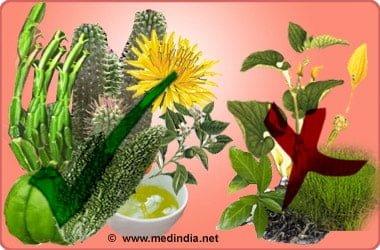 hierbas buenas y peligrosas para bajar de peso