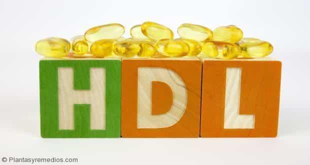 alimentos aumentar el colesterol bueno