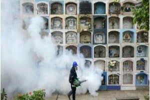 Viruz zika causa defectos de nacimiento en América Latina y Estados Unidos
