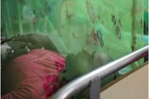 zika haiti noticia