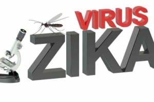 El virus Zika se puede transmitir a través de la orina y la saliva