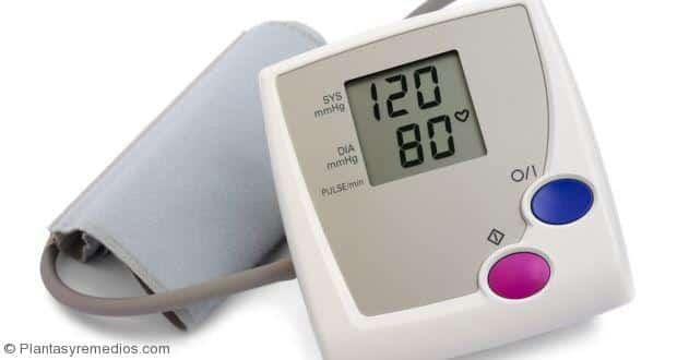 Alternativas naturales para bajar la presión arterial alta (hipertension )