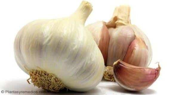 Beneficios para la belleza y salud del ajo