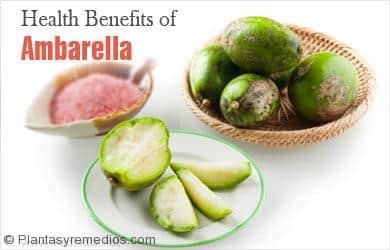 Beneficios para la salud de la ambarella o jobo indio