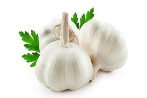5 Alimentos para aumentar las defensas del organismo