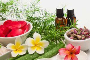Aceite arbol de té para las infecciones en la piel