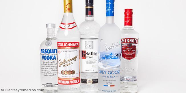 10 Beneficios Del Vodka Para La Piel Y El Pelo Plantas Y Remedios