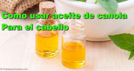 Aceite De Canola Para El Crecimiento Del Cabello Plantas Y Remedios