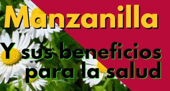 Manzanilla beneficios usos