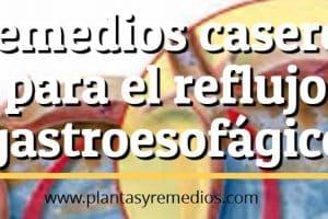 Remedios caseros para el reflujo gastroesofágico (ERGE)