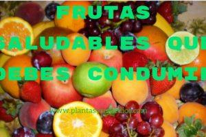 frutas saludables faciles de conseguir
