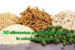 20 alimentos prebióticos para la salud intestinal