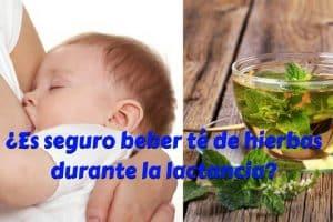 ¿Es seguro beber té de hierbas durante la lactancia-